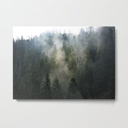 Willamette National Forest Mists Metal Print