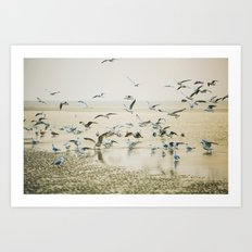 My heart beats in a million gulls Art Print
