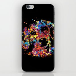 Colorful Dachshund dog  - Doxie iPhone Skin