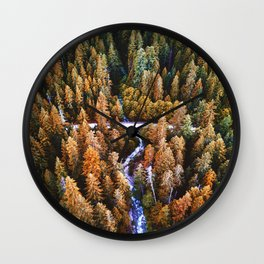forest aerial view in yosemite Wall Clock
