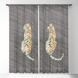 tiger pose with stripes Sheer Curtain