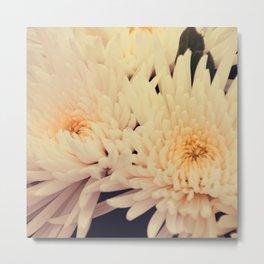 Gorgeous white dahlia Metal Print