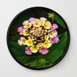 Fresh Lantana Flower Against Leaf Background Wall Clock