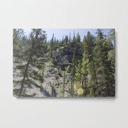 The Canyon Wall 2 Metal Print