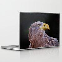 predator Laptop & iPad Skins featuring Predator by DistinctyDesign