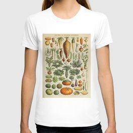 VEGETABLES Legumes Et Plantes Potageres Vintage Scientific Illustration French Language Encyclopedia T-shirt