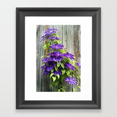 Climbing Purples Framed Art Print