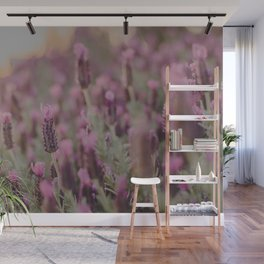 Lavender Stories Wall Mural