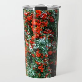 barberry in the winter Travel Mug