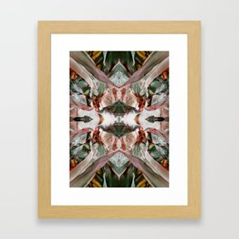 Augmenta Aliena Framed Art Print