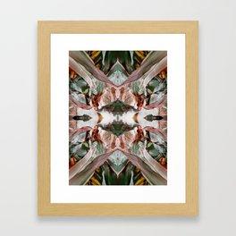 Augmenta Aliena Framed Art Print