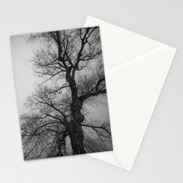 Nature Photography Weeping Willow | Lungs of the Earth | Black and White Stationery Cards