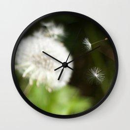 Dandelion Seeds Photography Print Wall Clock