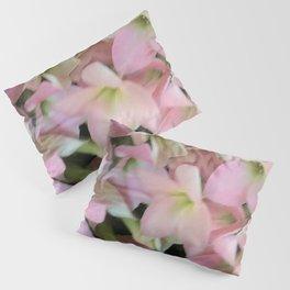 Kalanchoe Flowers Pillow Sham