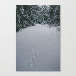Walking in a Winter Wonderland Canvas Print