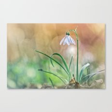 Match your nature with Nature Canvas Print