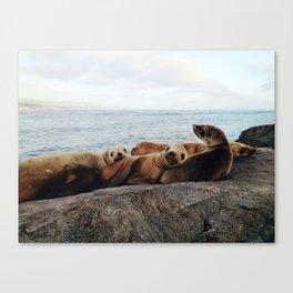 Four-of-a-Kind Canvas Print