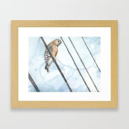 Bird on Wire Framed Art Print