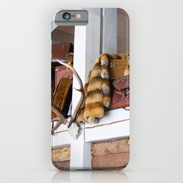 Mountain chalet iPhone Case