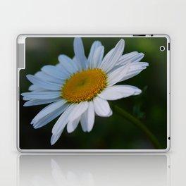 Photo 1 Laptop & iPad Skin