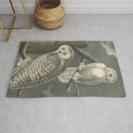 Vintage Illustration of Snowy Owls (1840) Rug