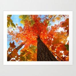 Famous fall 9 Art Print
