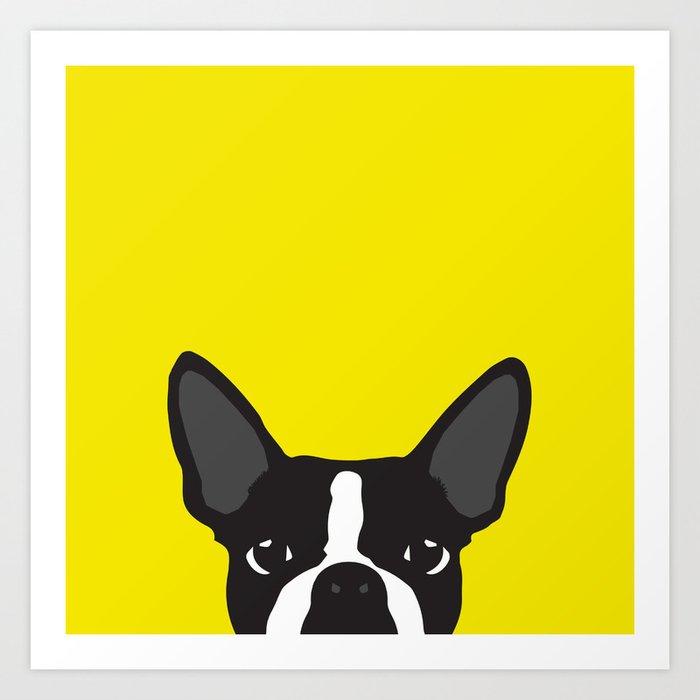 Boston Terrier Yellow Art Print