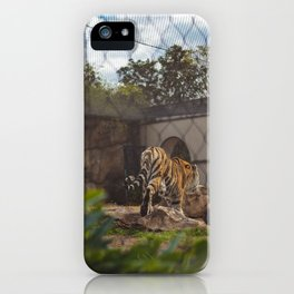 LSU's Mike VI iPhone Case