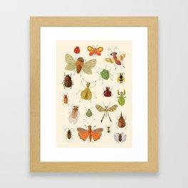 Encyclopédie des insectes  Framed Art Print