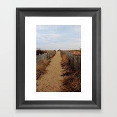 Path to the Beach Framed Art Print