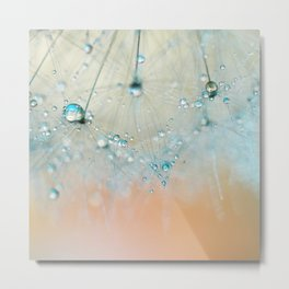 dandelion aqua Metal Print