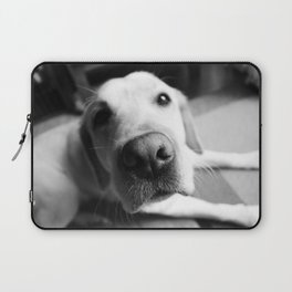 dog Laptop Sleeve