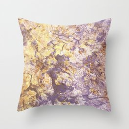 Washed In Light Throw Pillow