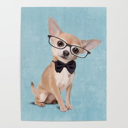 Mr. Chihuahua Poster