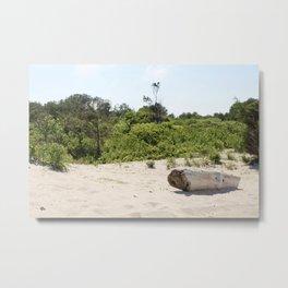 Driftwood on Assateague Island Metal Print