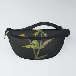 Centaurea Amberboi  Mary Delany Delicate Paper Flower Collage Black Background Floral Botanical Fanny Pack