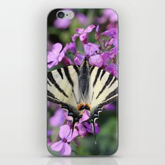 Butterfly on a Pink Flower iPhone & iPod Skin