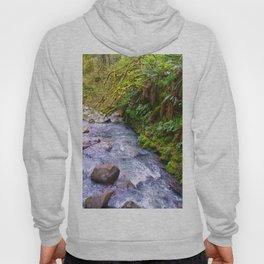 Macleary Creek Hoody