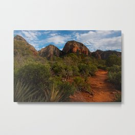 Mescal trail in Sedona, Arizona, late December Metal Print