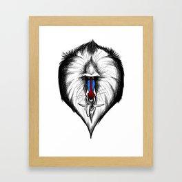 Dragon Monkey Framed Art Print