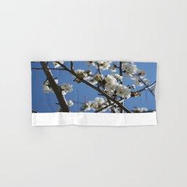 Cherry Blossom Branches Against Blue Sky Hand & Bath Towel