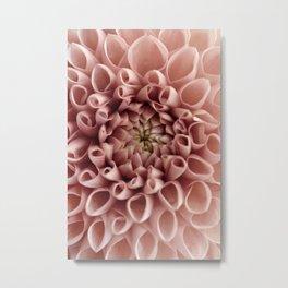 Blush Pink Flower Metal Print