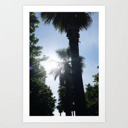 Palm Obsession Art Print