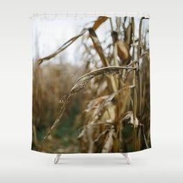 Autumn Cornstalk II Shower Curtain