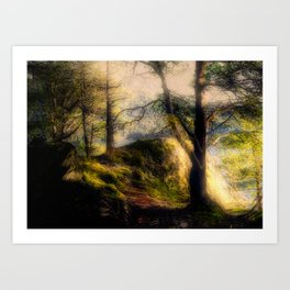 Misty Solitude, The Way Through The Woods Art Print