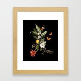 Biodiversity Framed Art Print