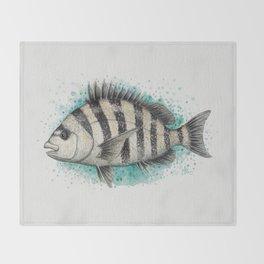 """Sheepshead Splash"" by Amber Marine ~ Watercolor Fish Painting (Copyright 2016) Throw Blanket"