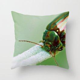 Scarabaeus Macro Close Up Throw Pillow