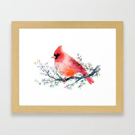 Watercolor red cardinal on berry branch Framed Art Print