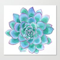 succulent Canvas Prints featuring Succulent by Susan Windsor